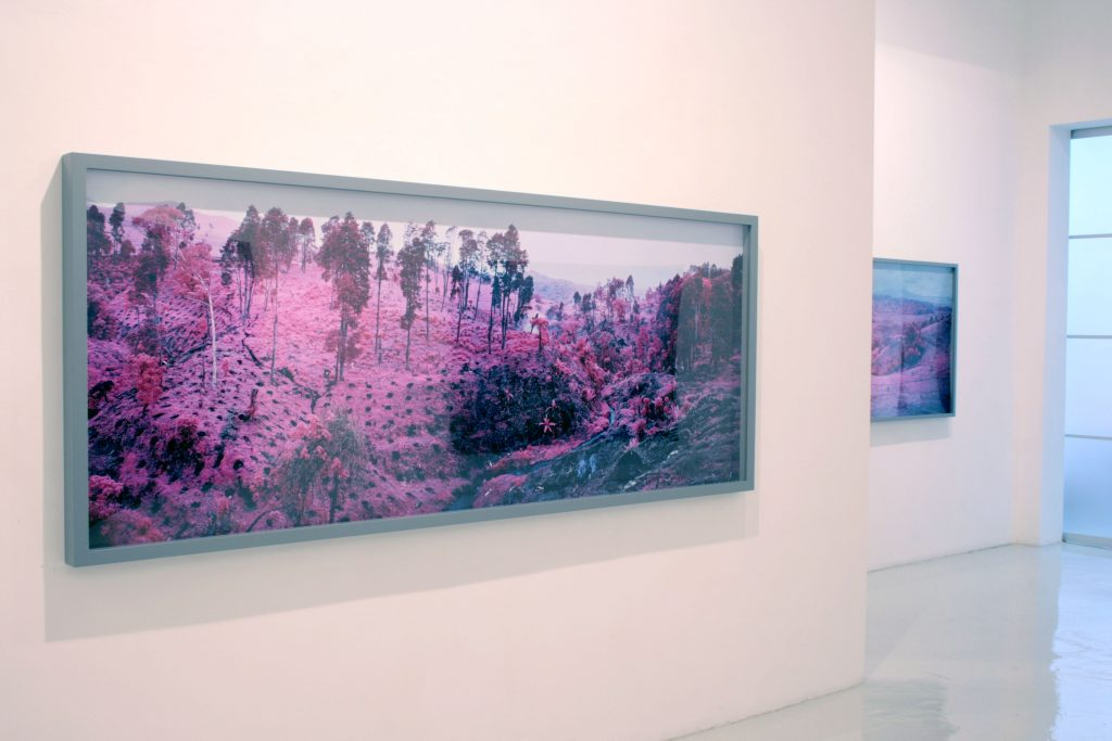 Richard Mosse - Galería Leyendecker 001