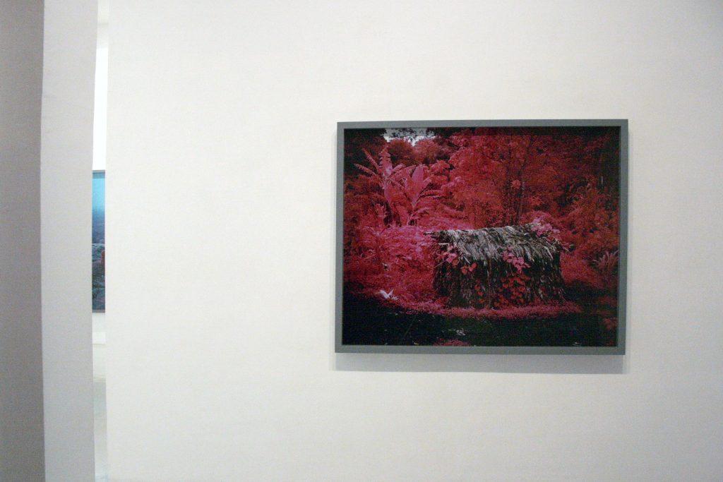 Richard Mosse - Galería Leyendecker 006