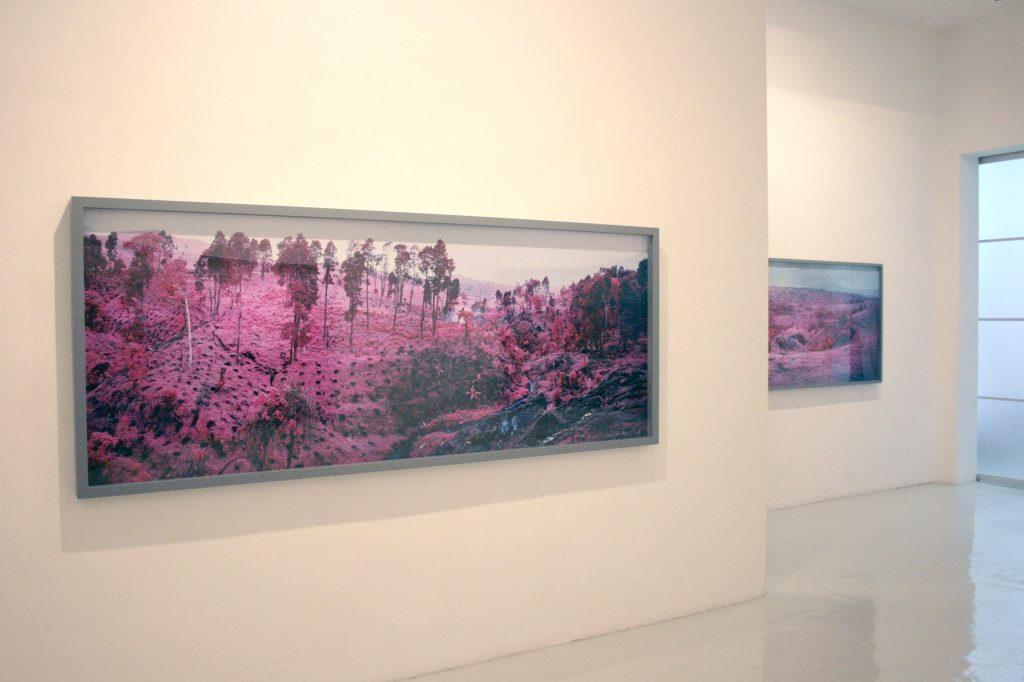 Richard Mosse - Galería Leyendecker 007