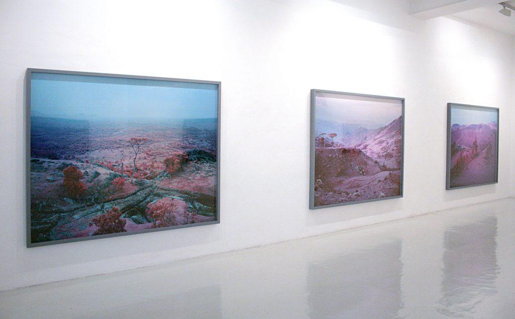 Richard Mosse - Galería Leyendecker 009